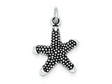 Sterling Silver Antique Starfish Charm style: QC4900
