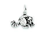 Sterling Silver Antiqued Raccoon Charm style: QC7851
