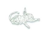 Sterling Silver Tiger Charm style: QC910