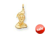 Disney Donald Duck Charm