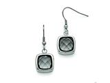 Chisel Stainless Steel Polished Square Glass Shepherd Hook Earrings style: SRE772
