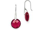 Chisel Stainless Steel Polished Red Glass Shepherd Hook Earrings style: SRE856
