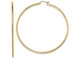 14k Hoop Earrings style: TF550
