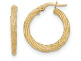 14k Textured Post Hoop Earring style: TF567