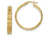 14k Textured And Polished Hoop Earrings style: TF911