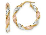 14k Tri-color  Polished/satin Twisted Hoop Earrings style: TH750