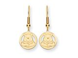 Disney Winnie the Pooh Dangle Wire Earrings style: WD163GP