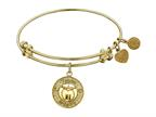 "Angelica Non-antique Yellow Stipple Finish Brass ""apple; Teach, Inspire"" Expandable Bangle Style number: GEL1036"