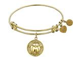 "Angelica Collection Non-antique Yellow Stipple Finish Brass ""apple; Teach, Inspire"" Expandable Bangle style: GEL1036"