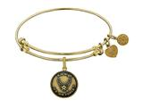 Angelica Collection Brass with Yellow Finish Aim High U.S. Air Force Round Expandable Bangle style: GEL1288