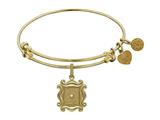 Brass with Yellow Finish Friends Picture Frame Over Peephole Angelica Expandable Bangle style: GEL1296
