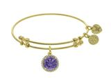 Brass With Yellow Finish February Birth Month Charm On Yellow Angelica Collection Bangle style: GEL1416