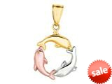 14K Tri-Color Gold Trinity Dolphin Circle Pendant on a 18 Inch Chain