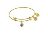 Angelica Collection Brass With Yellow Finish Charm February Heart Shap E CZ Birth Month style: TGEL9014
