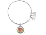 Wind And Fire Pet Collection Expandable Bangle With Pomeranian Photo Charm style: CGWF767S