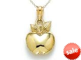 14k Yellow Gold Polished Apple Pendant Necklace - Chain Included style: CG17281