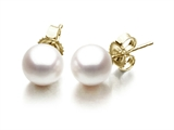Akoya Cultured Pearl Earrings AA 5-5.5 mm with 14kt Gold Post style: 42007
