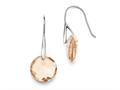 Chisel Stainless Steel Polished Champagne Glass Shepherd Hook Earrings