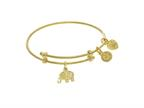 Brass With Yellow Finish Charm On Yellow Angelica Collection Tween Bangle (Small) Style number: TGEL9106