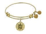 "Angelica Collection Non-antique Yellow Smooth Finish Brass ""longevity"" Turtle Expandable Bangle style: GEL1120"