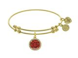 Angelica Collection Brass With Yellow Finish Charm January CZ Birth Month On Yellow Bangle style: GEL1415