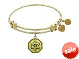 Angelica Collection Antique Yellow Smooth Finish Brass star Of David Expandable Bangle style: GEL1136
