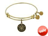 Brass Yellow Supernatural Saving People, Hunting Thing Charm For Angelica Collection Bangle style: GEL1771